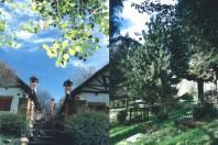 Due ville gemelle nel bosco